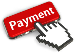 Flexible Payment Option for Web Hosting
